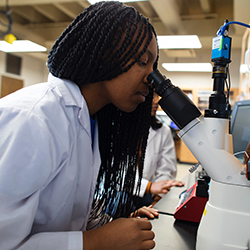 Become a STEM student at Creighton's CCAS