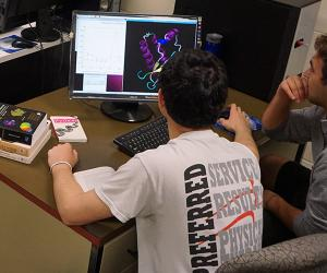 Students in Prof. Soto's lab work on a data visualization